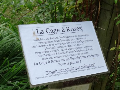 cage-roses07